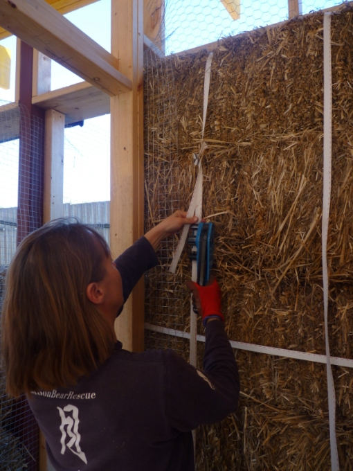 compressing the bales using the tension tool to pull down on the strapping